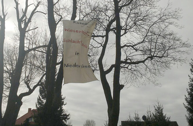 Transparent am Bahnhof Niederlehme