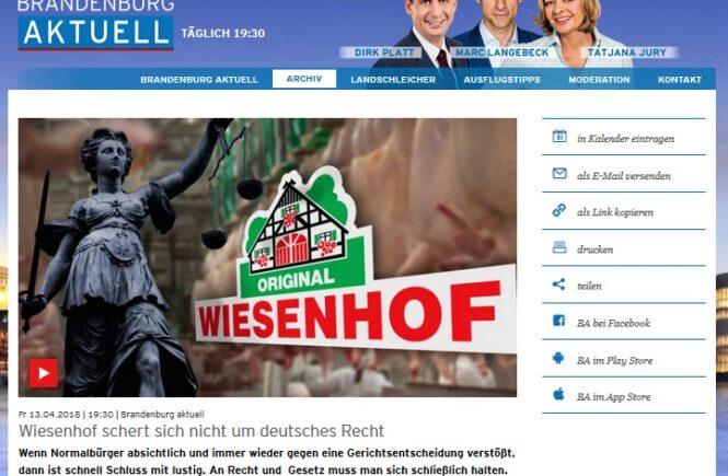 rbb Brandenburg aktuell vom 13.4.2018 - Wiesenhof schert sich nicht um deutsches Recht