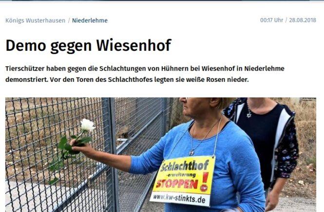 MAZ vom 28.8.2018 - Demo gegen Wiesenhof